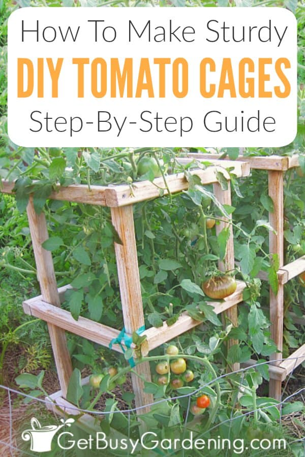 How To Make Sturdy DIY Tomato Cages: Step-By-Step Guide
