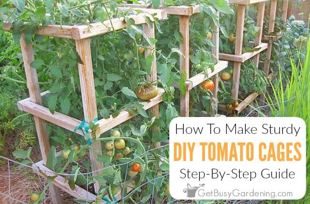 How To Make Sturdy DIY Tomato Cages
