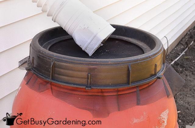 Screen covering rain barrel top