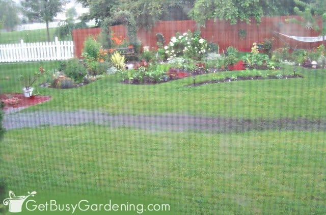 My flooded backyard before adding a rain garden