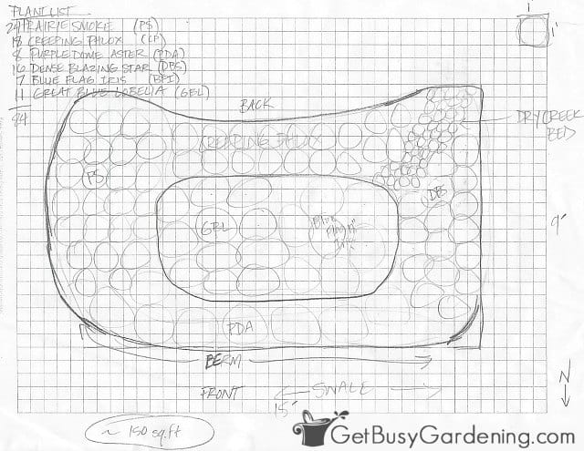 My initial rain garden design drawing
