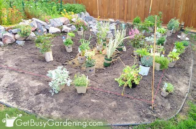 Spacing everything out before planting