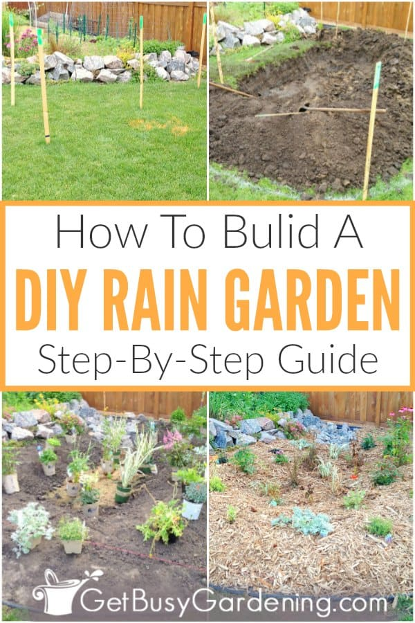 How To Build A DIY Rain Garden Step-By-Step Guide
