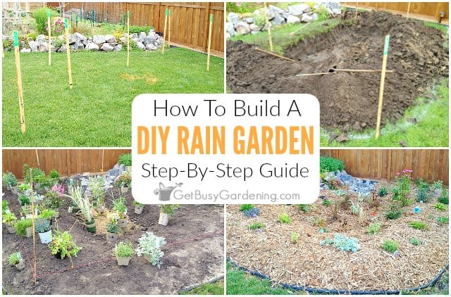 How To Build A Rain Garden Step-By-Step
