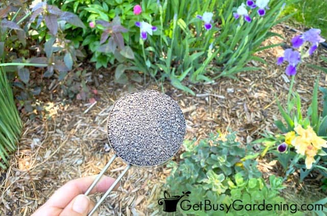 Measuring fertilizer for flower beds before use