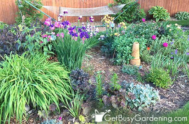 My center flower garden bed