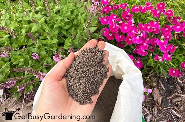 Organic slow release fertilizer for flowers
