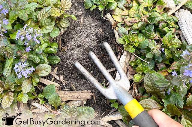 Working organic granules into flower garden soil