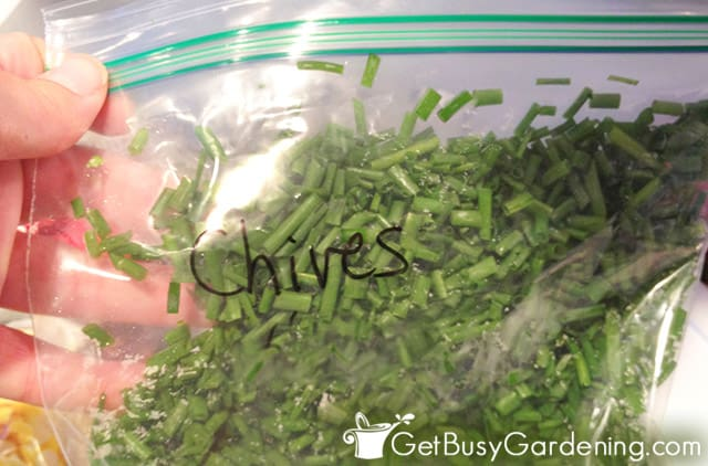 Storing chives in freezer baggie