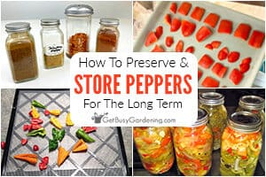 How To Preserve & Store Peppers Long Term