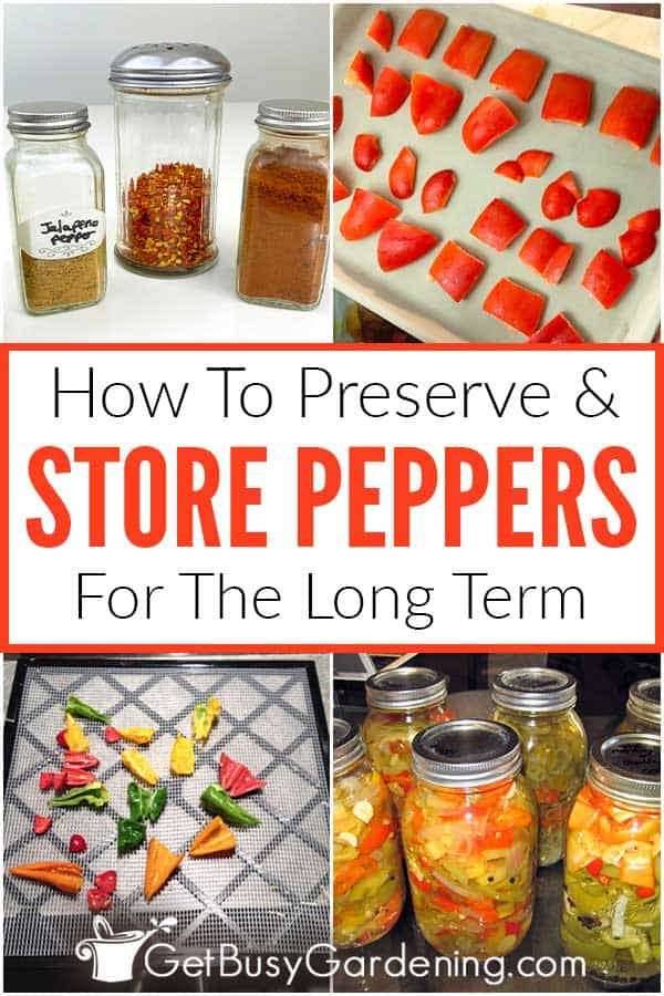 How To Preserve & Store Peppers For The Long Term