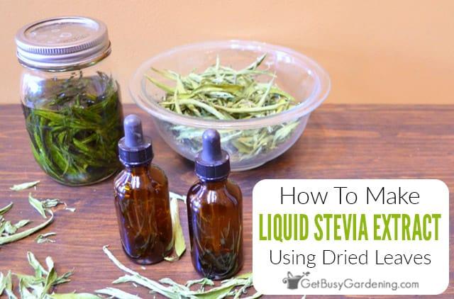 How To Make Homemade DIY Liquid Stevia Extract