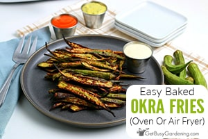 Easy Baked Okra Fries Recipe (Oven Or Air-Fryer)