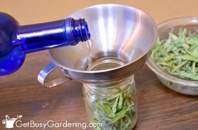 Pouring alcohol over leaves to make stevia tincture