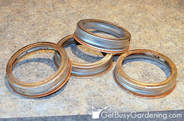 Used canning jar bands