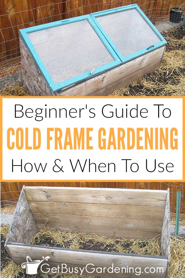 Beginner's Guide To Cold Frame Gardening How & When To Use