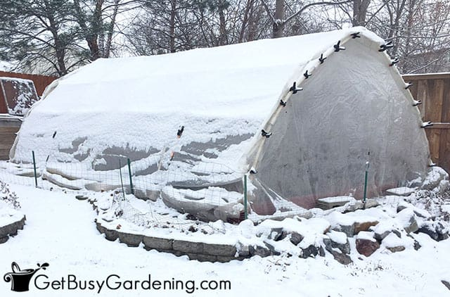 Greenhouse covered in fresh snow