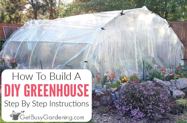 How To Build A DIY Greenhouse