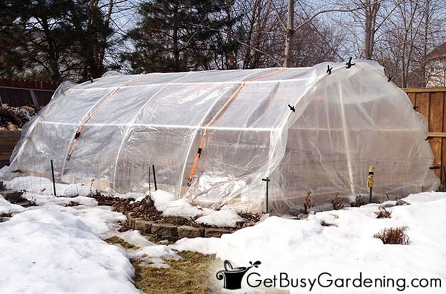 Newly built greenhouse in my backyard