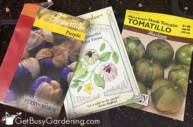 Different types of tomatillo seed packets