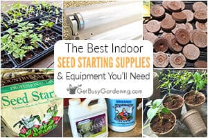 The Best Indoor Seed Starting Supplies & Equipment