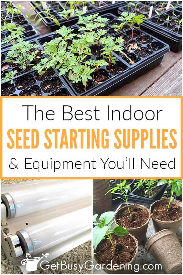 The Best Indoor Seed Starting Supplies & Equipment You'll Need