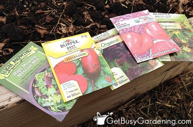 Different types of seeds ready for planting