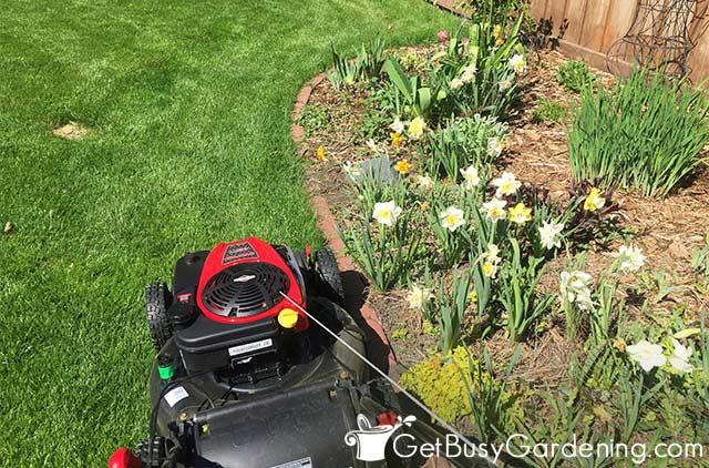 Cutting around the lawn edges like a zamboni